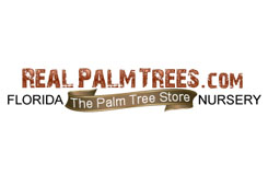 Real Palm Trees voucher codes